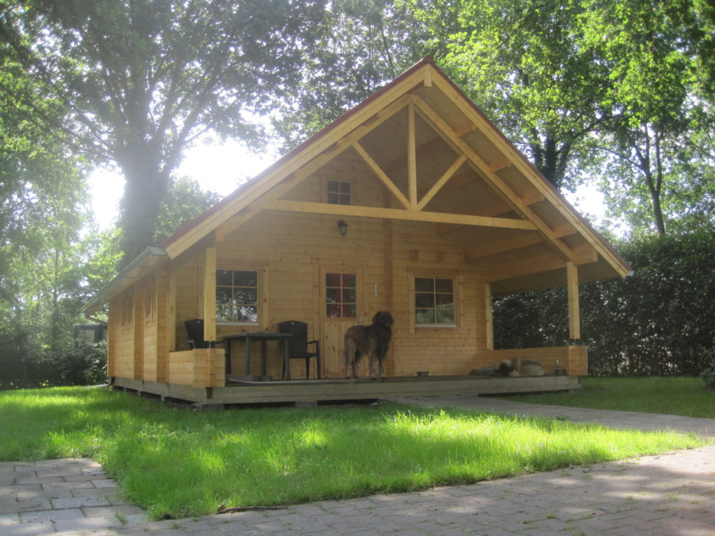 Blokhut-Chalet-Lodge-zweedshuisje-vakantiehuisje- Liz-Bekuloghomes